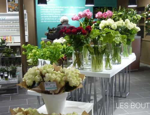 Nouvelle boutique Oya à Paris rue Lecourbe
